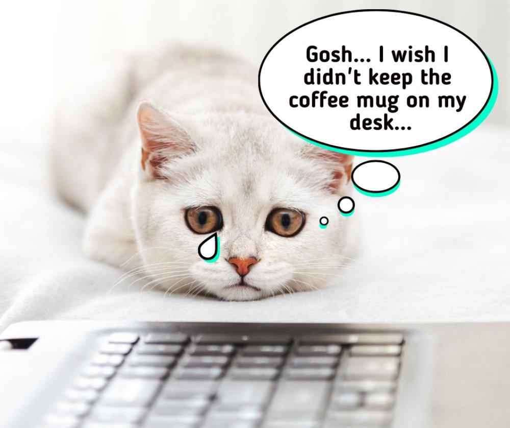 Wet Laptop Repair